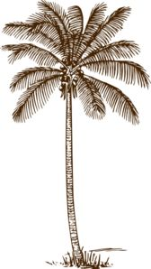 Palm Tree clip art.
