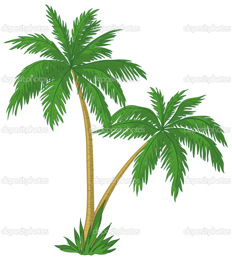 Palm Leaf Free Clipart.