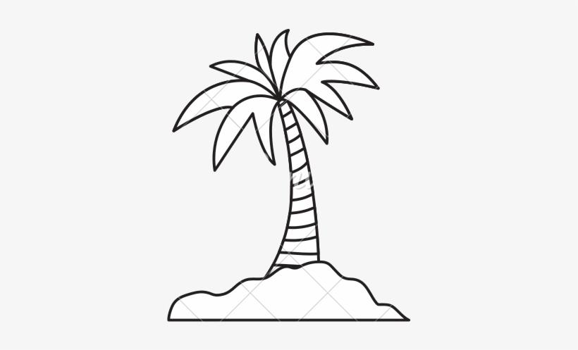 Island Palm Tree.