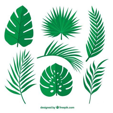 Set de hojas verdes de palmeras vector gratuito.