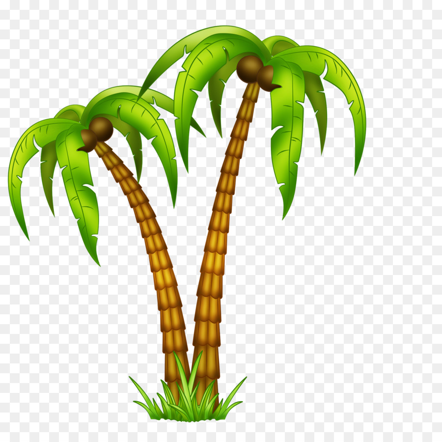 Palm Tree Drawing clipart.