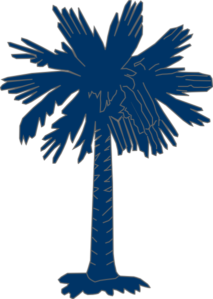 Palmetto Tree Images.