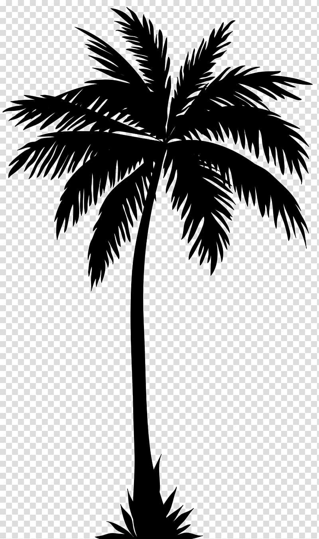 Palm tree illustration, Arecaceae Silhouette Tree , palm.