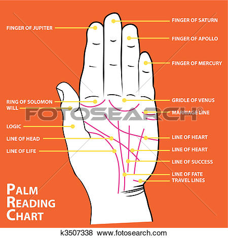 Clip Art of Palmistry map of the palm's main lines k3507338.