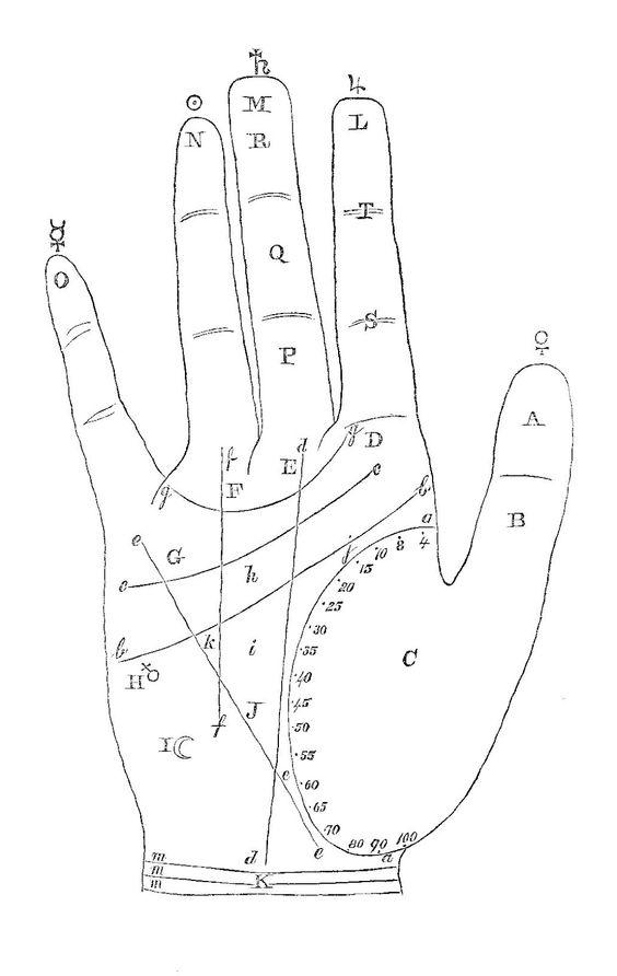 Antique Images: Vintage Palmistry Graphic: Hand Clip Art of.
