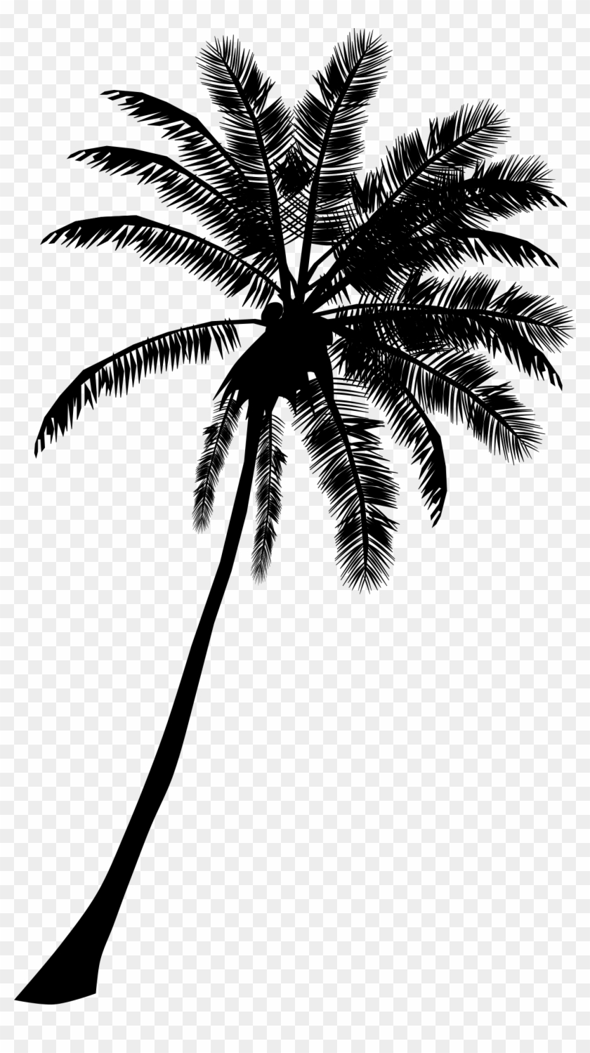 Palm Tree Banner Black And White Download.
