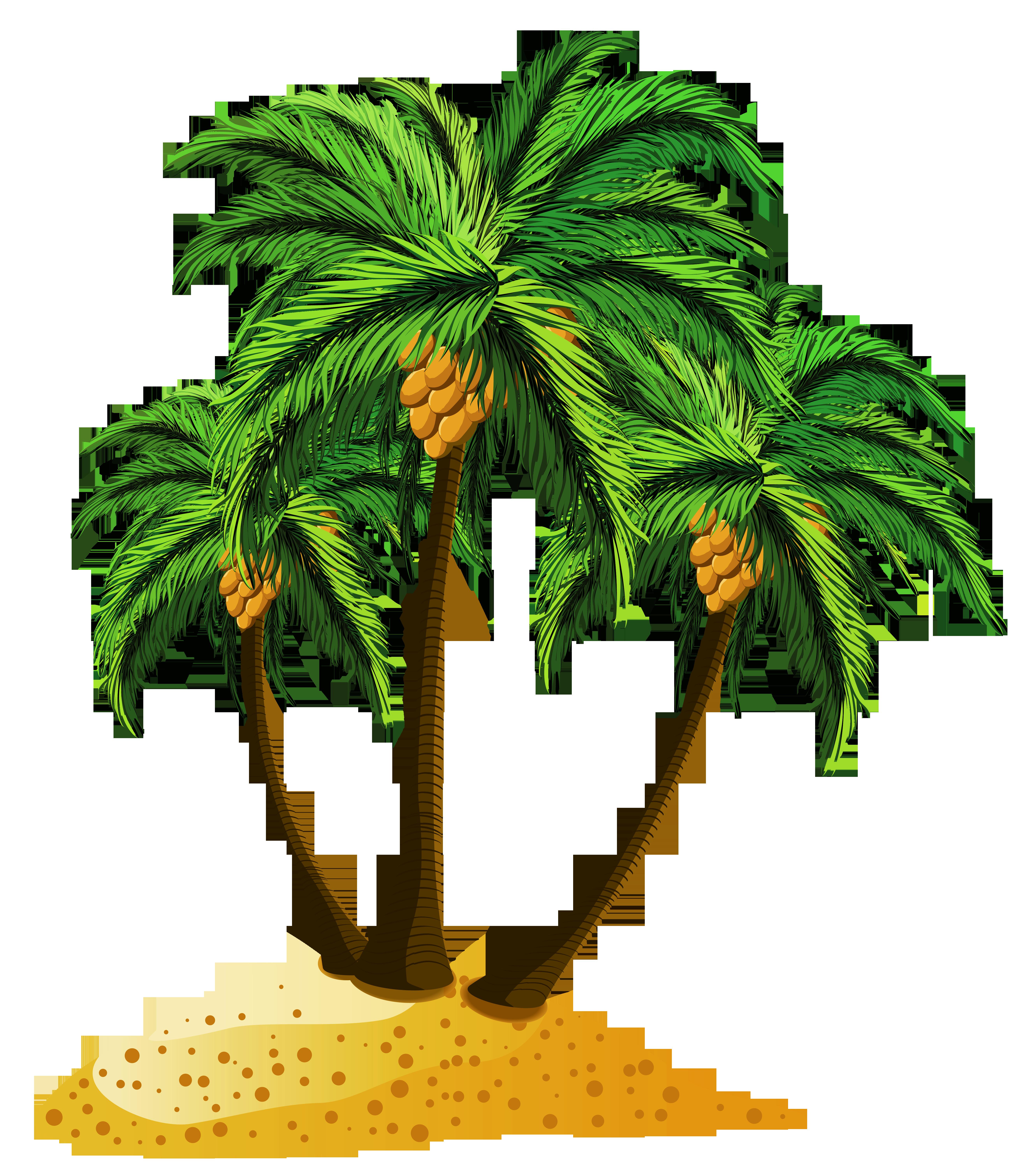 Transparent Beach Palms Decor PNG Clipart.