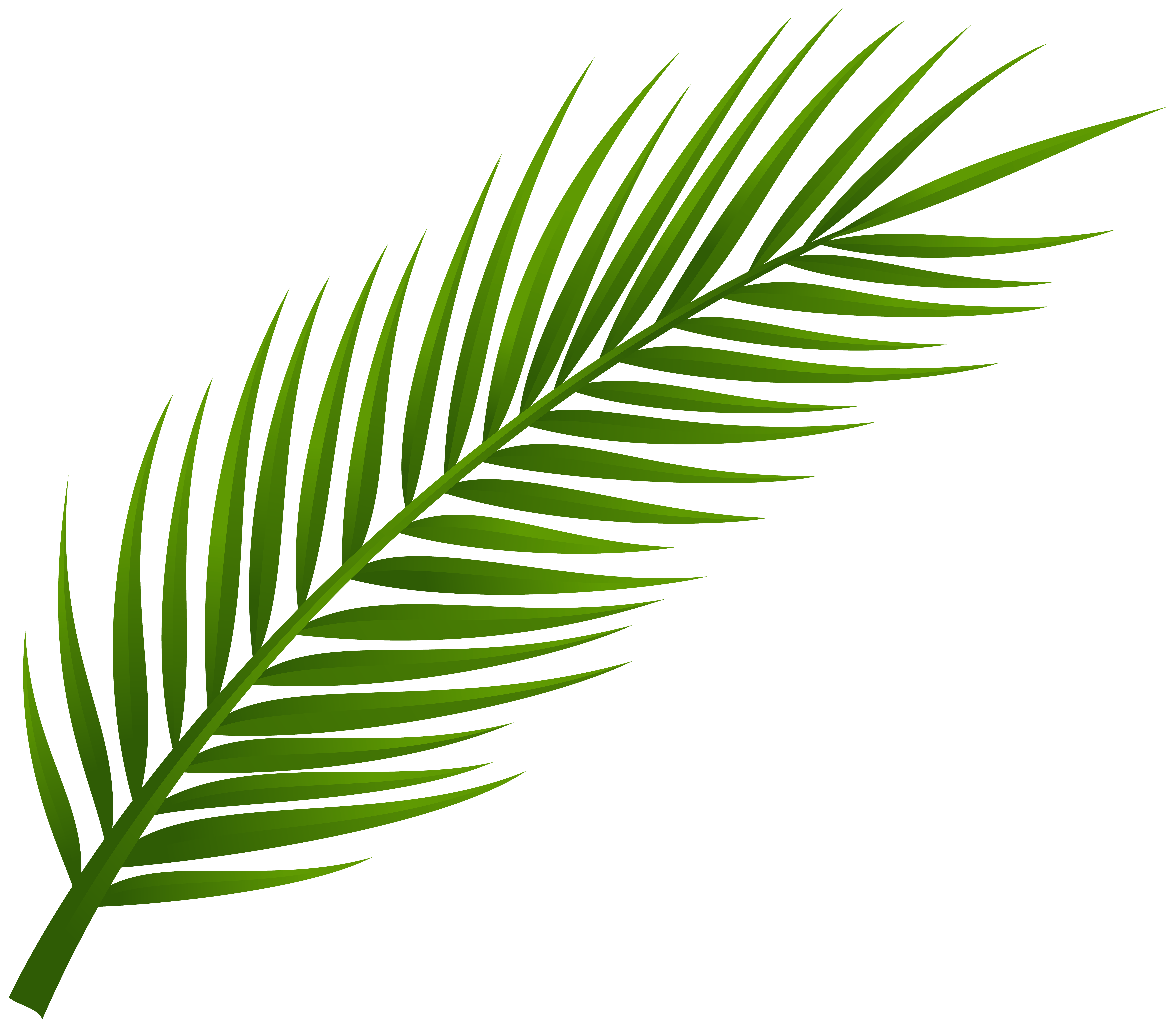 Palms clip art clipart images gallery for free download.