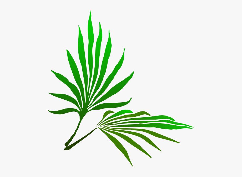 Palm Frond Clip Art #108010.