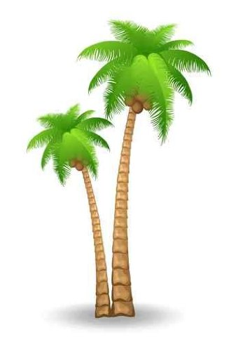 Palm tree clip art free clipart images.