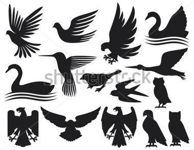conjunto de siluetas de pájaros (conjunto de aves, colibrí, Paloma.