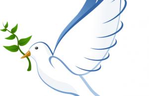 Por qué la paloma de la paz lleva una rama de olivo.