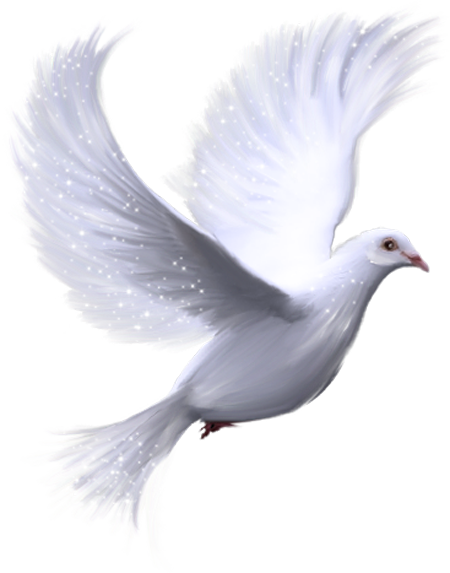 DesignerScraps: Pigeons..
