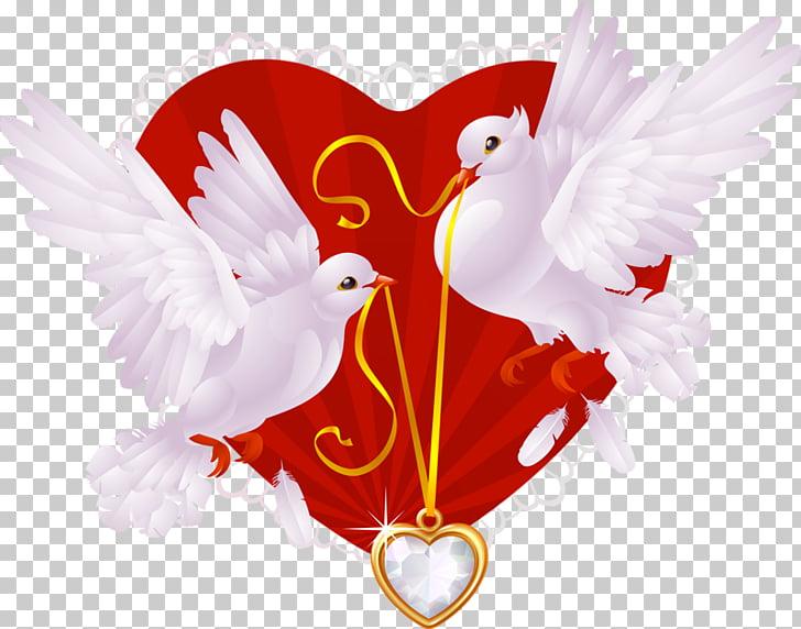 Dos palomas blancas, ilustración de invitación de boda.