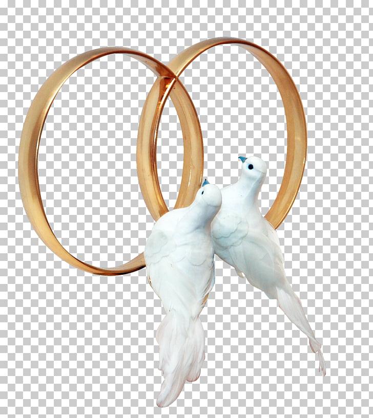 Anillo de bodas de palomas y palomas, boda PNG Clipart.