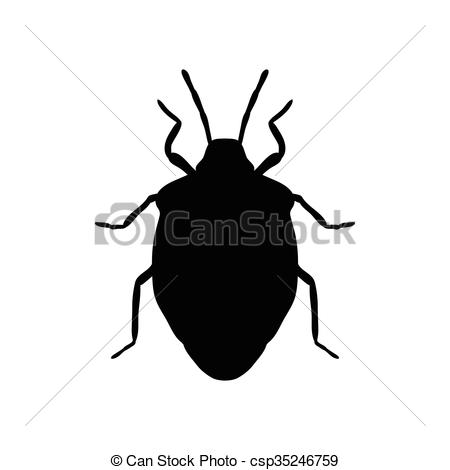 Clipart Vector of shield bug. Palomena prasina. Sketch of shield.