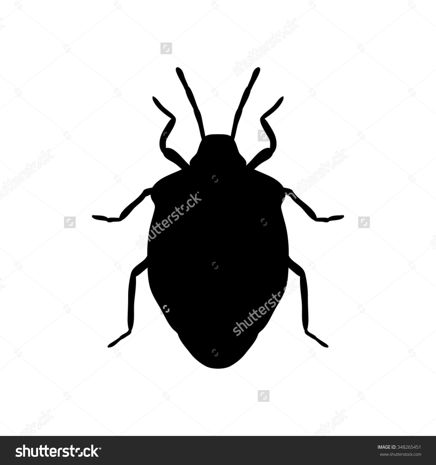 Insect Silhouette Shield Bug Palomena Prasina Stock Vector.