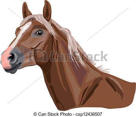Vector Clipart of palomino horse.