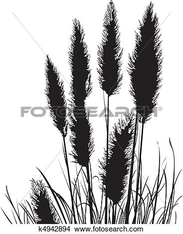 Clipart of Pampas Grass Silhouette k4942894.