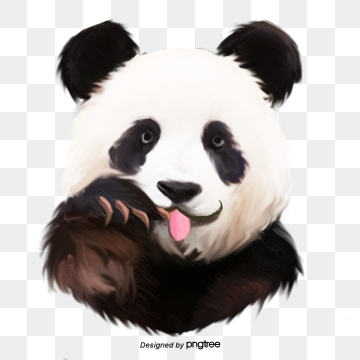 Panda PNG Images, Download 1,912 Panda PNG Resources with.