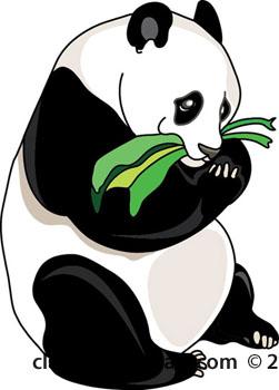 Panda eating bamboo clipart 2.