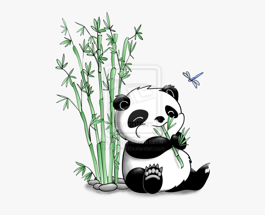 Bamboo Drawing Cartoon.