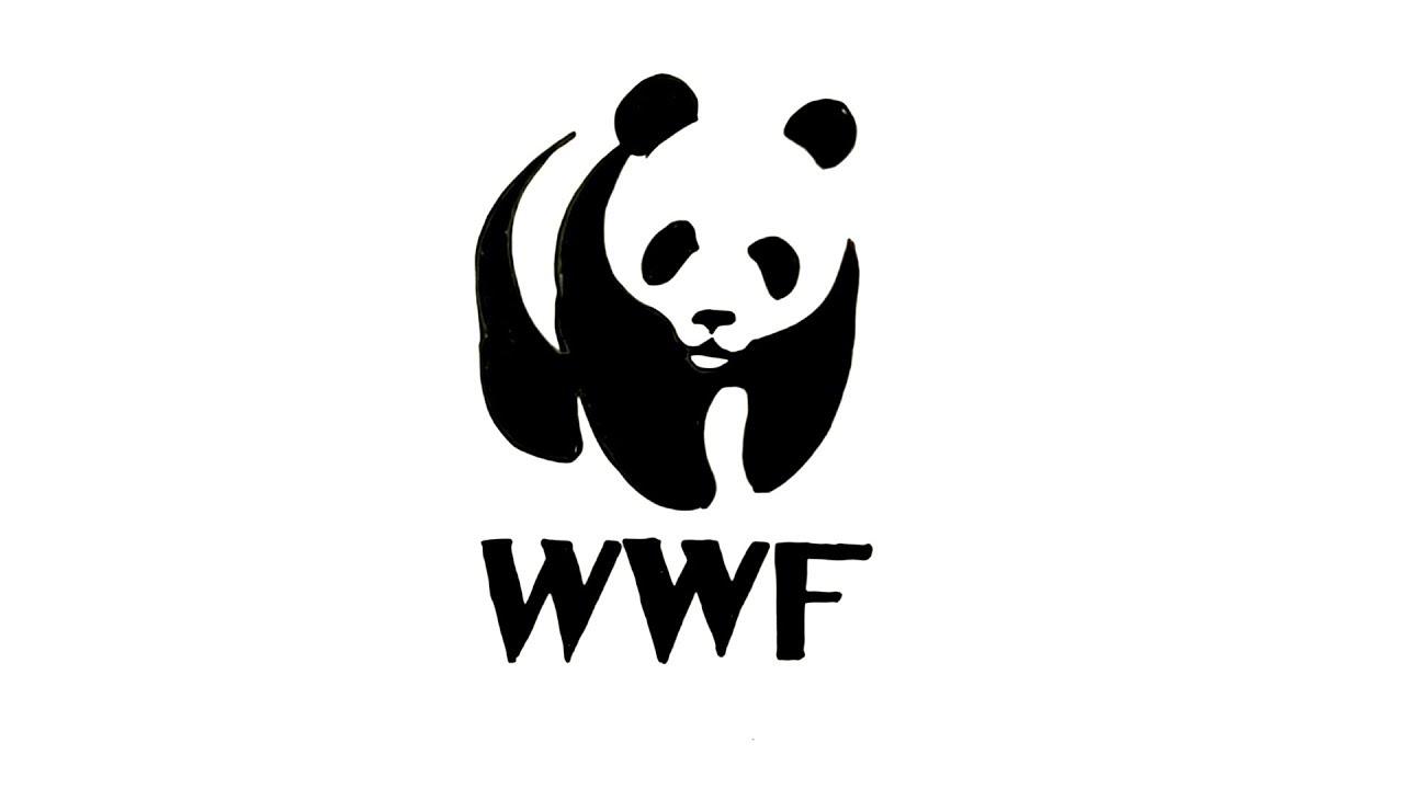 How to Draw the WWF Logo.