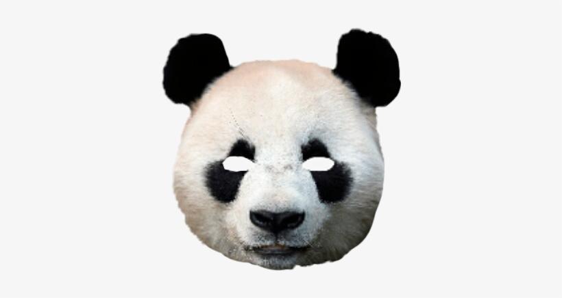 Mask Costume Scary Creepy Freetoedit Panda Animal.