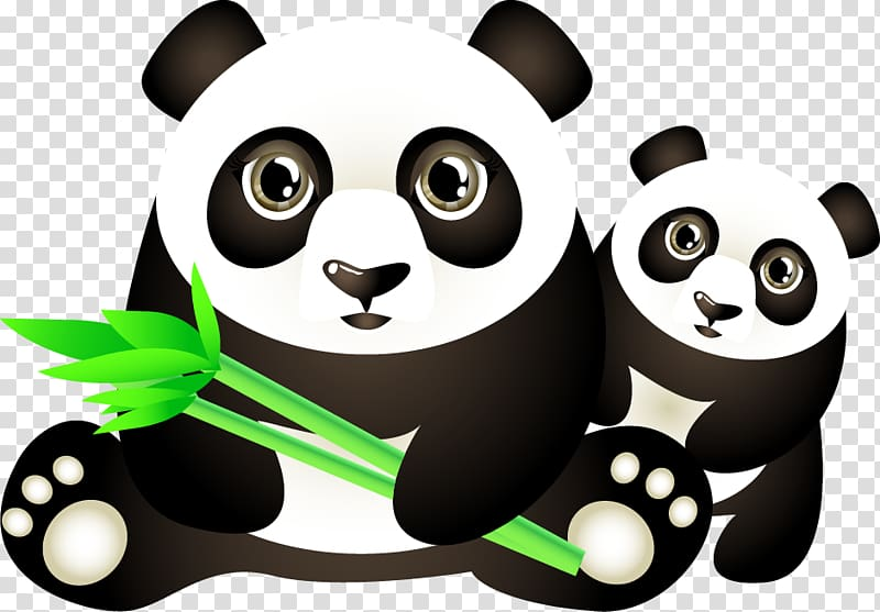 Two pandas , Giant panda Red panda Bear Euclidean , Panda.