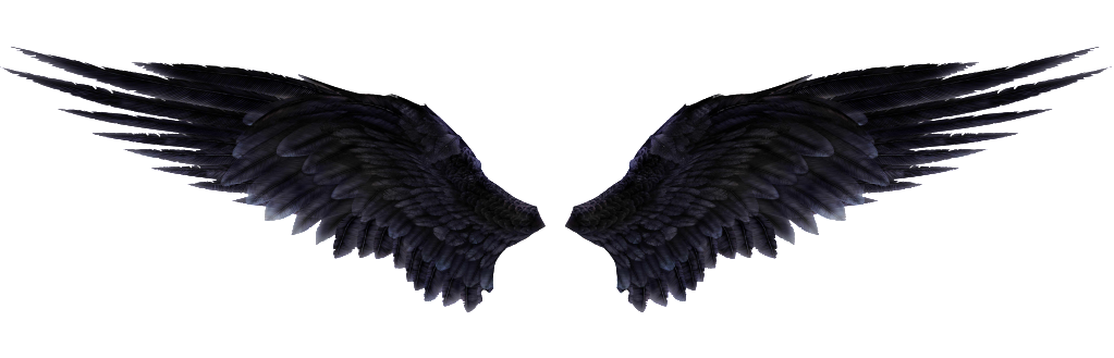 Wings PNG images free download, angel wings PNG.