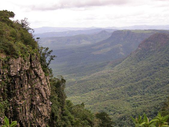 South africa, Africa travel and Kruger national park on Pinterest.
