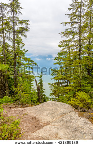 Outdoor trail Stock Photos, Images, & Pictures.