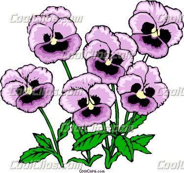 Pansy Clipart.