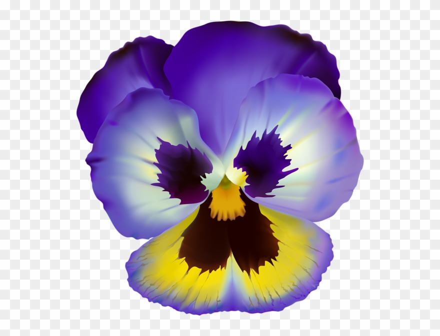 Violet Flower Transparent Clip Art.