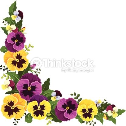 Vector corner background with yellow and purple pansy.