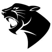 panther (225×225).