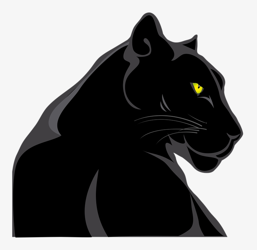 Panther, Animals, Feline, Wild, Animal World.