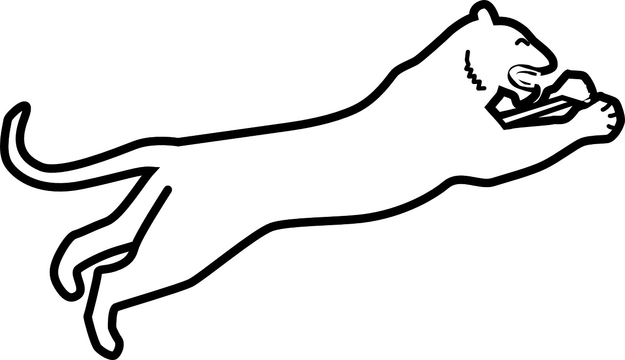 Panther Clipart Black And White , Transparent Cartoon.