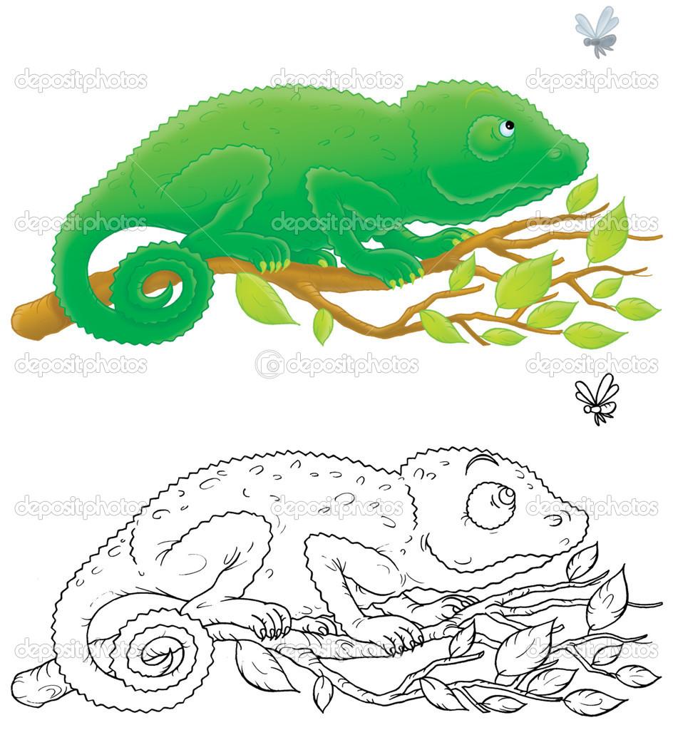 Chameleon — Stock Photo © AlexBannykh #9260142.