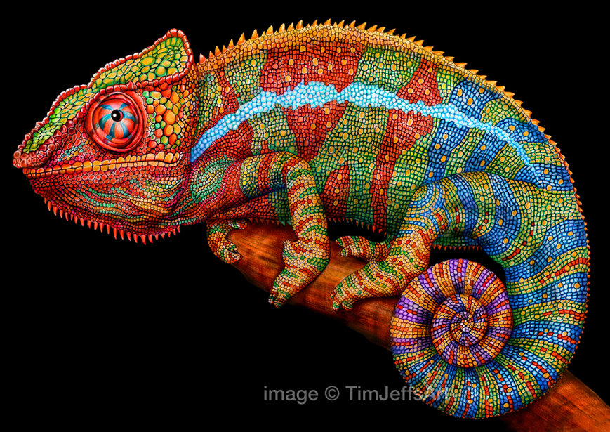 Panther Chameleon Colored Pencil Drawing. Signed by Artist.