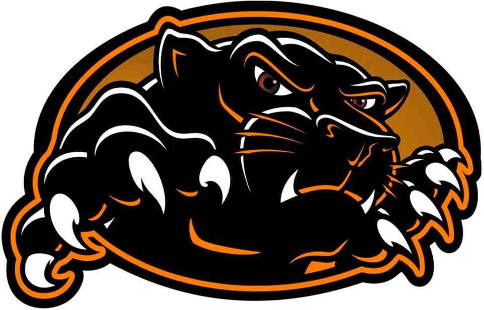 Free Panther Football Clipart Image.