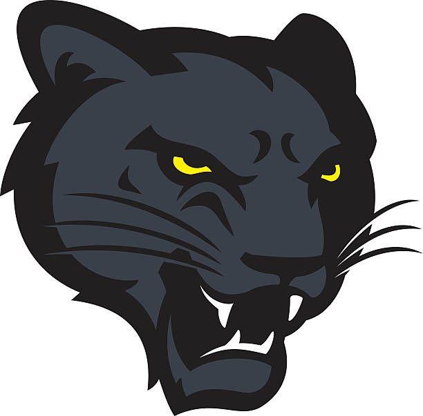 Panther Head vector art illustration.