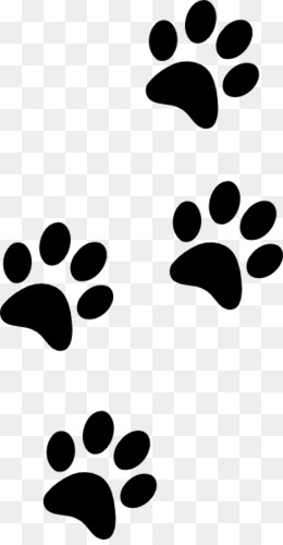 Panther Paw png free download.