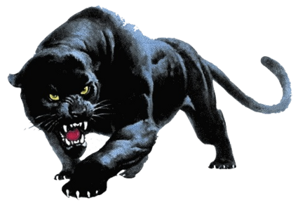 Download Panther PNG.