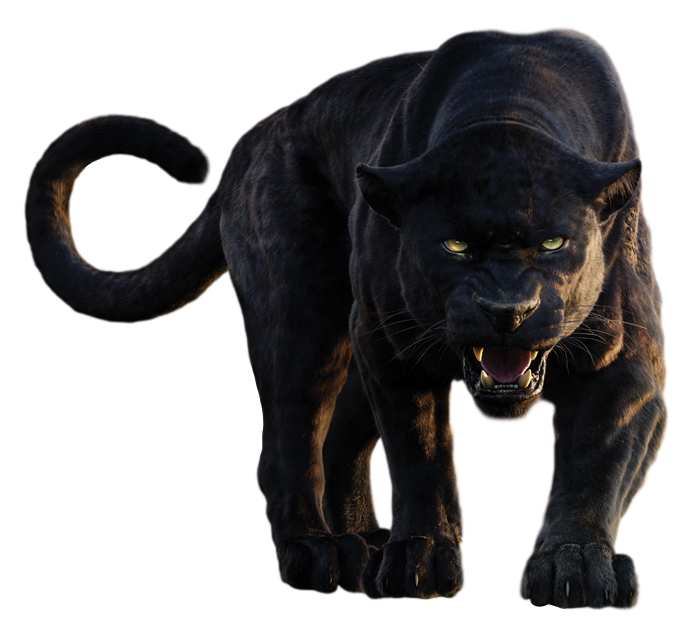 Download Free png Panther PNG Clipart.