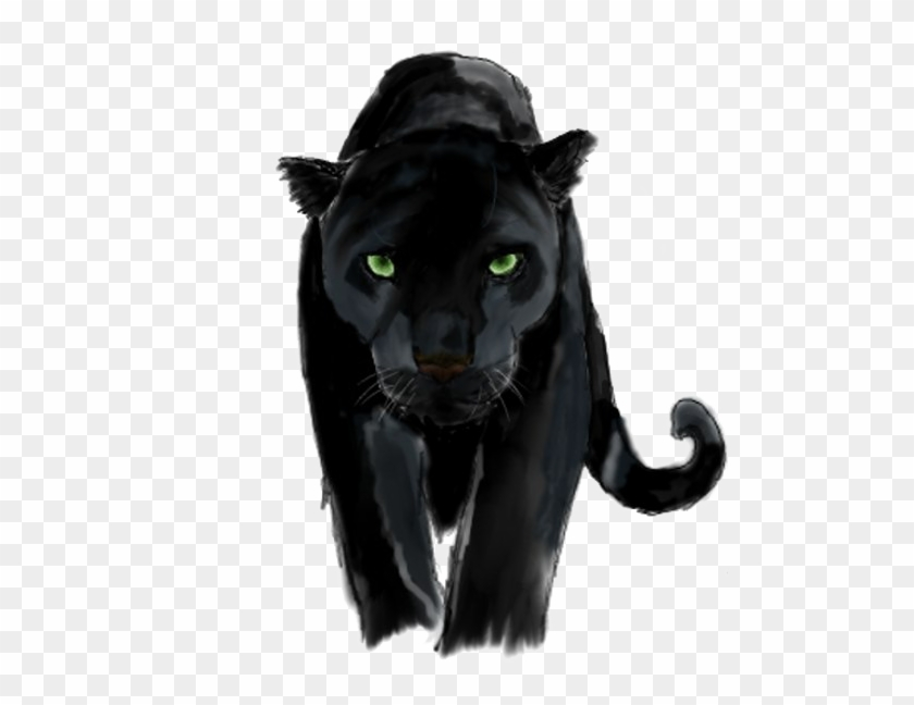 Panther Png Background Image.