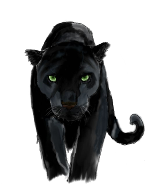Download Free png Panther PNG Background Image.