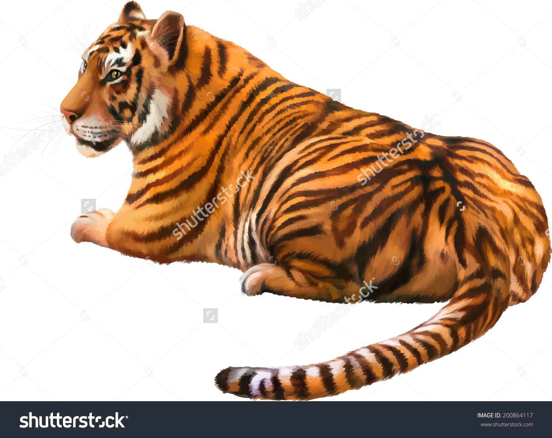 Portrait Bengal Tiger Panthera Tigris Tigris Stock Vector.