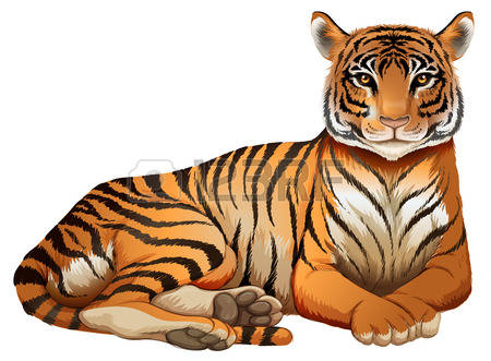 157 Panthera Tigris Stock Illustrations, Cliparts And Royalty Free.