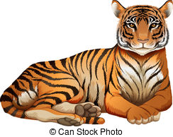 Panthera tigris Illustrations and Clip Art. 321 Panthera tigris.